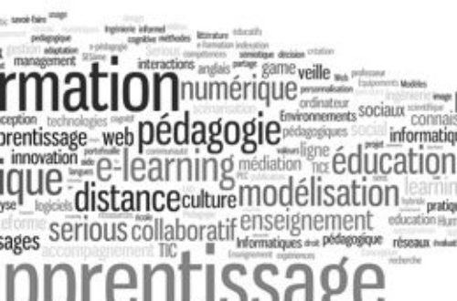Article : Togo: Quel avenir pour le pays avec les formations BTS?